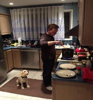 Pets kitchen safety